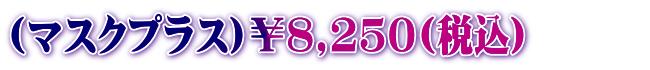 8,250円(税込)
