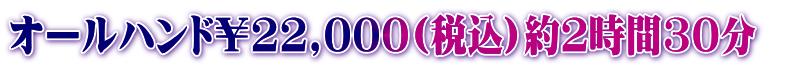 オールハンド22,000円
