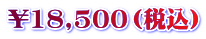 ¥18,500(税込)