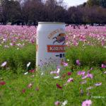 キリンビールのコスモス園